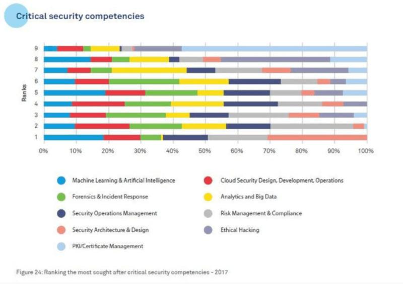 Critical Security Competencies